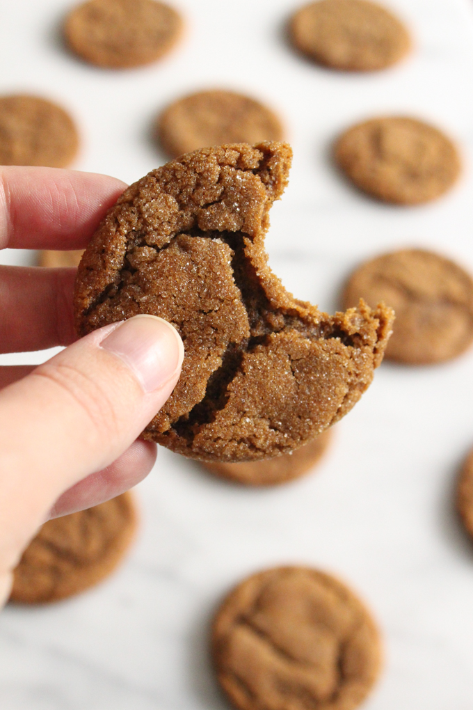 close-up view of hand holding a bitten molasses cookie