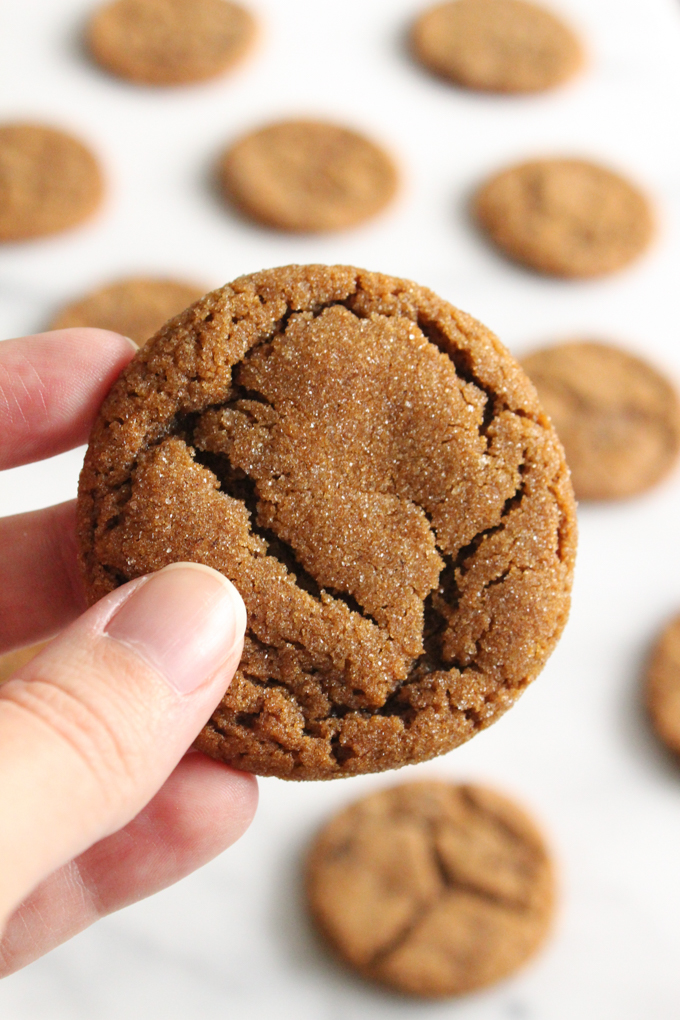 close-up view of hand holding a molasses cookie